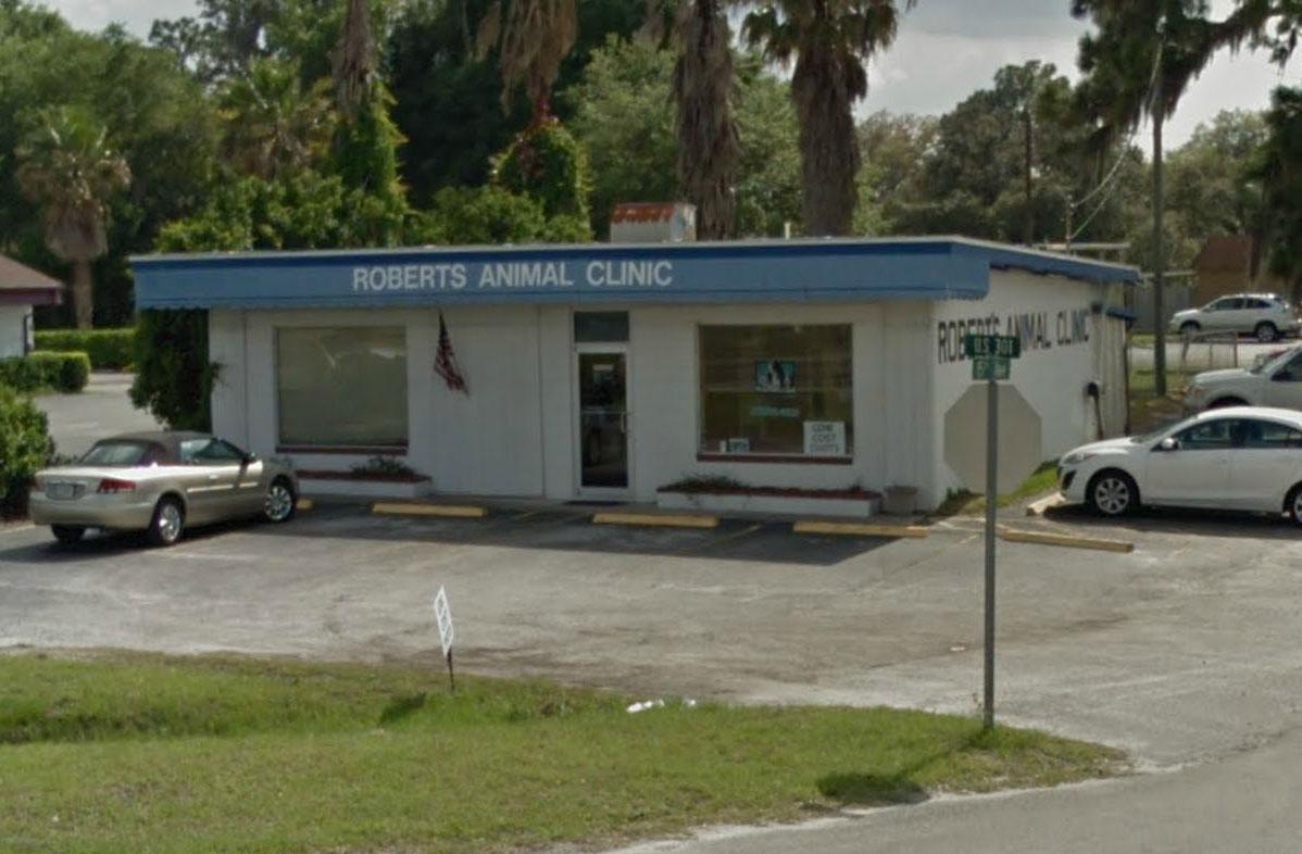Low Cost Animal Hospitals of Central Florida - Orlando, FL Area